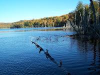 blogue de pêche, fleuve saint-laurent, Daniel Lefaivre, pêche fleuve