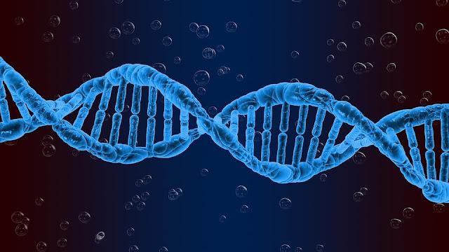 DNA of full form