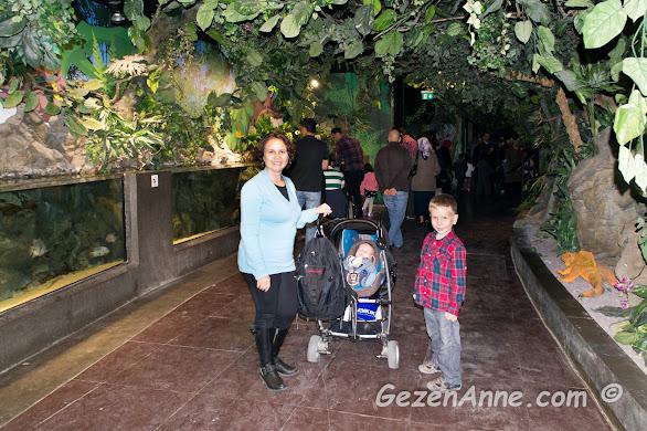 akvaryum girişindeki orman maketlerinde oğlumla ve bebeğimle yürürken, Turkuazoo