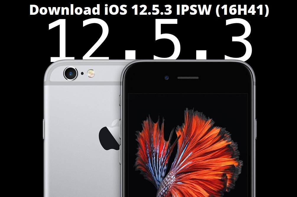 Download iOS 12.5.3 IPSW