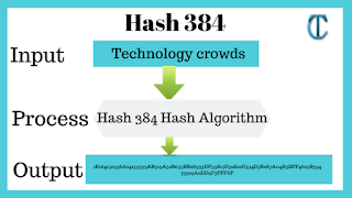 Hash 384: How to compute Sha-384 hash security using C#