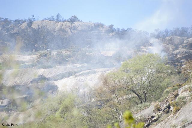 Incendio en el cañón