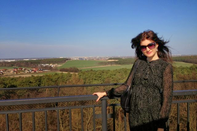 Zwiedzanie pałacyku w Szreniawie, Ciekawe miejsca w Wielkopolsce, Wielkopolska na weekend.