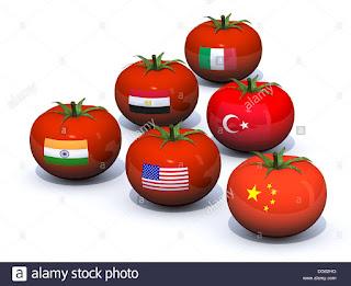 Tamatar Ke Fayde   Tomato Benefits