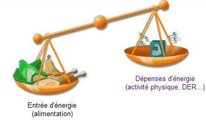 Éviter de gélule perte de poids