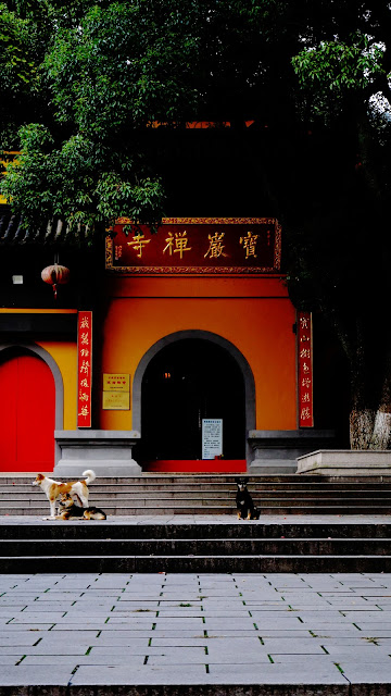 Photography: Baoyan Temple in the Deep Mountains