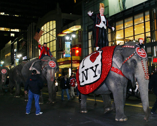 Bello Nock the clown rides atop the lead elephant as the animals walk up 34th St. towards Madison Square Garden in 2007. The annual elephant walks, which heralded the arrival of the circus in town, ended in 2010. (GARY LISTORT FOR NEW YORK DAILY NEWS)