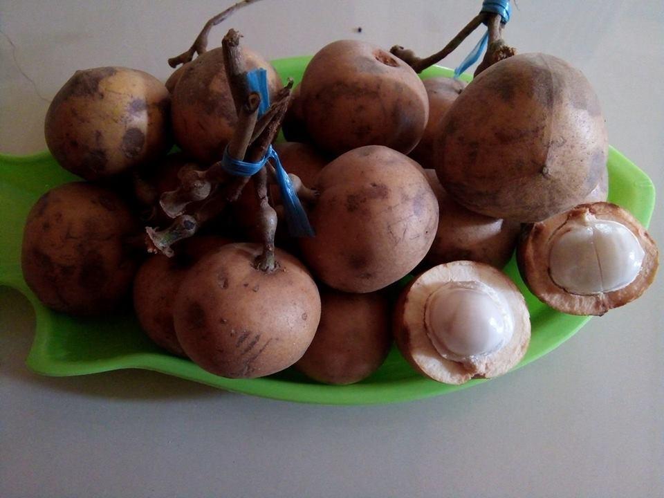 buah kapul di piring