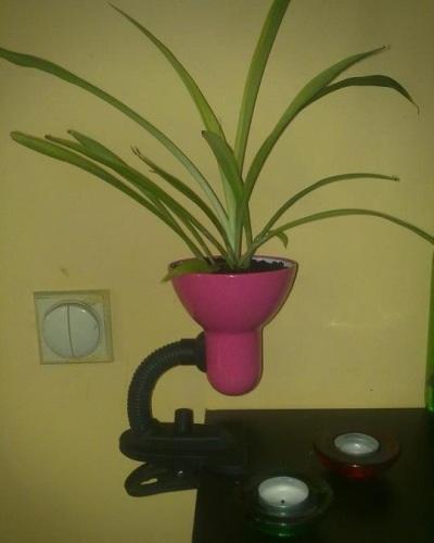 Lampu meja diubah menjadi pot tanaman hias