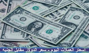 سعر الدولار مقابل الجنيه المصري اليوم