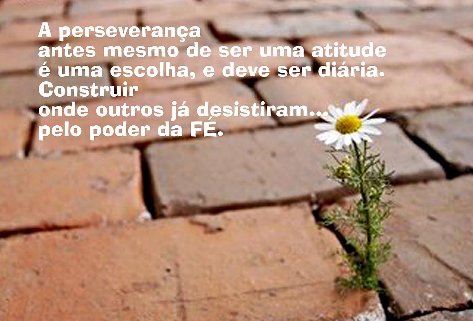 Persevere Em Oração Que Deus Irá Cumprir: Palavra Eficaz : Persevere