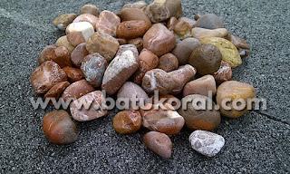 batu koral untuk aquarium