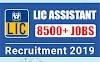 LIC Assistant Recruitment 2019 Apply Online for 7871 Posts
