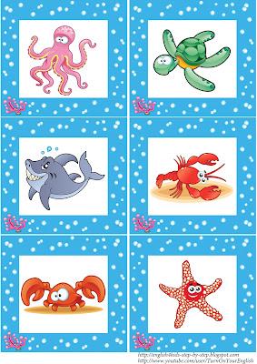 sea animals flashcards for educational activity english
