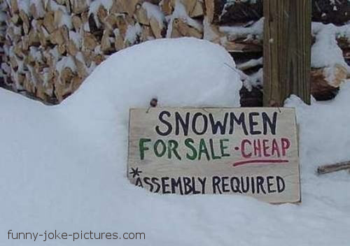 Snowman For Sale - Cheap - Assembly Required