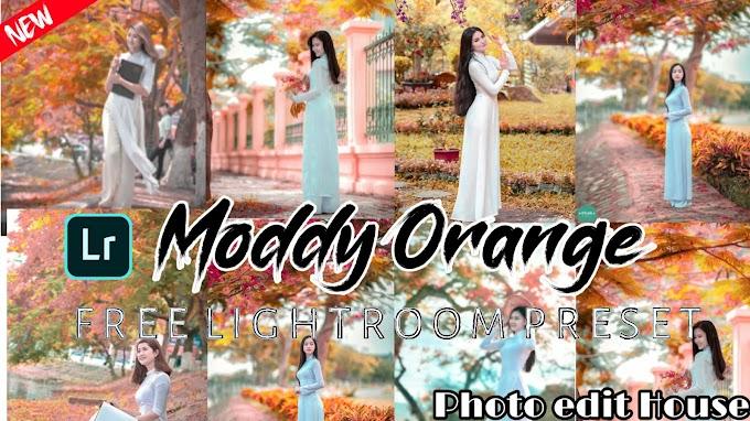Lightroome new Moddy Orange Presets | Free Dng | Lightroom Moddy Presets Mobile Tutorial 2019