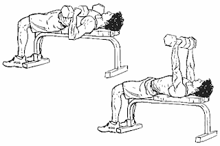 1. Dumbbell Bench Press