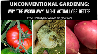 Unconventional Gardening: Why Doing it Wrong Might be Better!