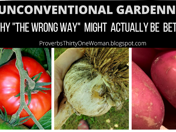 """Unconventional Gardening: Why Doing it """"Wrong"""" Might Actually be BETTER! (with video)"""