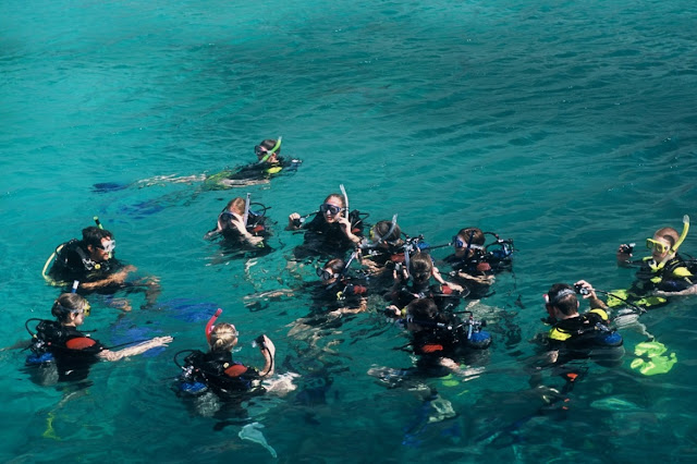 Scuba Diving to See Coral Reefs in Nha Trang Bay