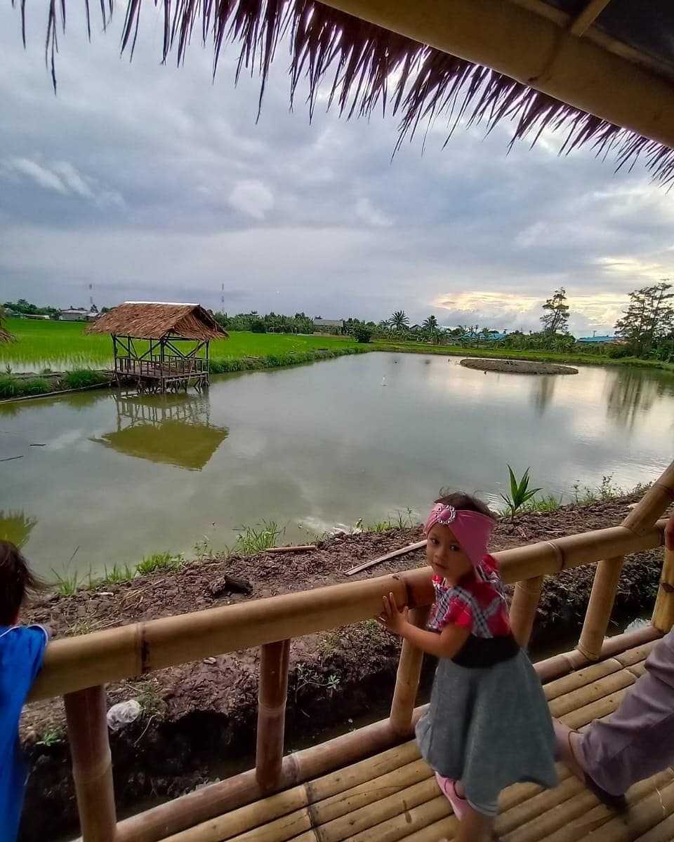 Wisata Sawah Pematang Johar Deli Serdang