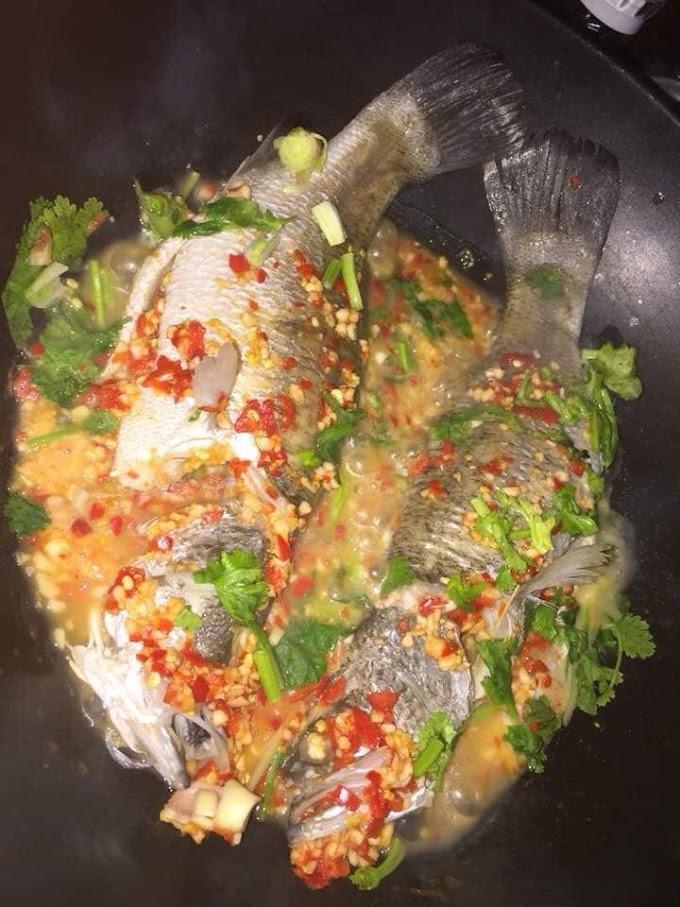 Resepi ikan siakap / jenahak / merah masak stim