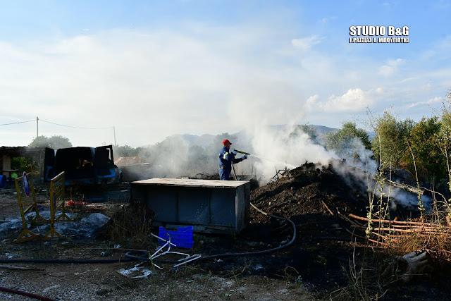 Αργολίδα: Πυρκαγιά στο Κουρτάκι