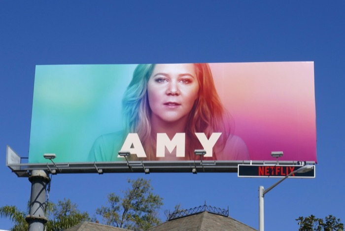 Amy Schumer spoof A Star Is Born Ally billboard
