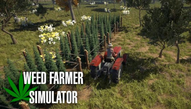Weed Farmer Simulator at the beginning you start from scratch, you need to plant each seed with your bare hands.