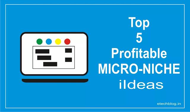 Top Profitable Micro-Niche Ideas To Start Blogging?