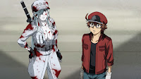White Blood Cell U-1196 and Red Blood Cell AA2153