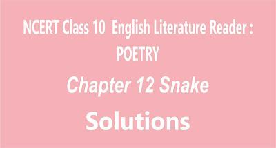 Chapter 12 Snake