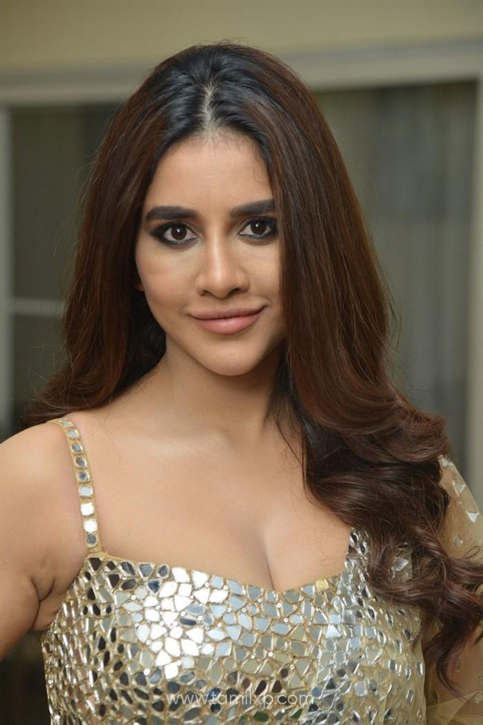 Telugu Actress Nabha Natesh