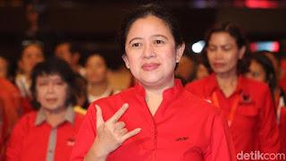 Dipilih Jadi Ketua DPR, Puan Maharani Punya Harta Rp363 Miliar