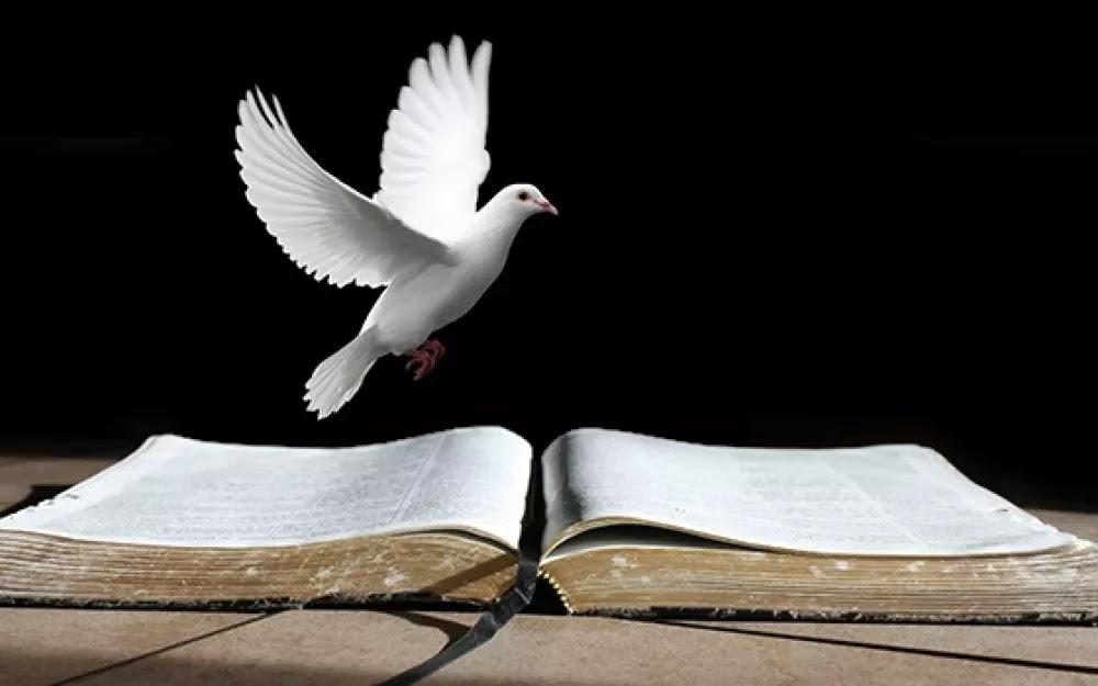 Série: Estudo do Espírito Santo (6)