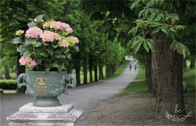 pałac Drottningham