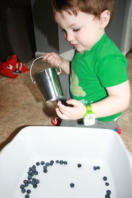 Montessori BFIAR activities Blueberries for Sal