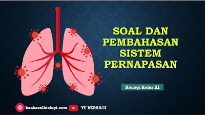 Soal Ujian / Ulangan Tentang Sistem Pernapasan | Materi Biologi Kelas XI