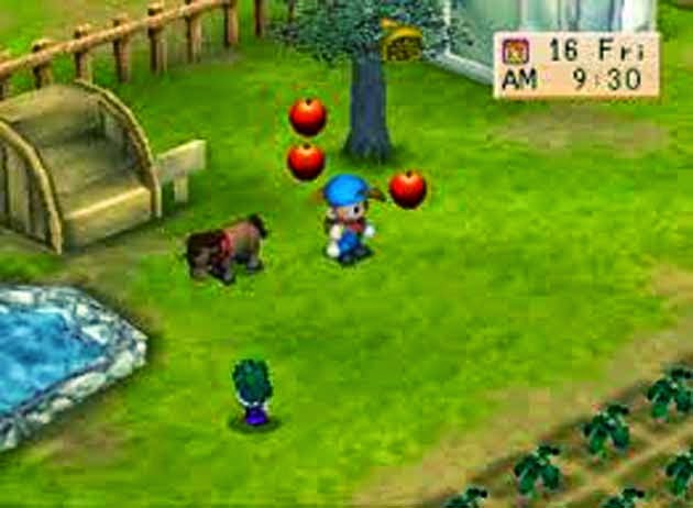 Free Game Harvest Moon Back to Nature Download Full Version
