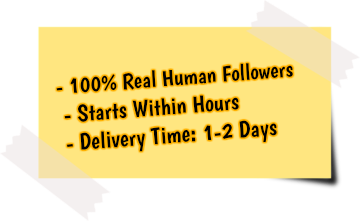 get more instagram followers service features