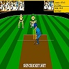 Play Virtual Cricket 2 game