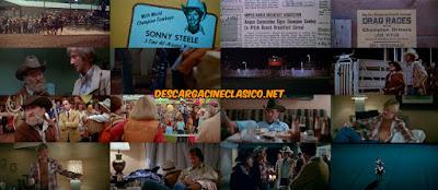 El jinete eléctrico (1979) The Electric Horseman - DESCARGACINECLASICO