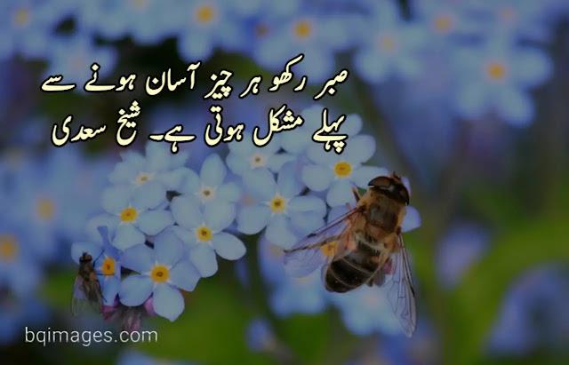 Best Sheikh Saadi Quotes in Urdu