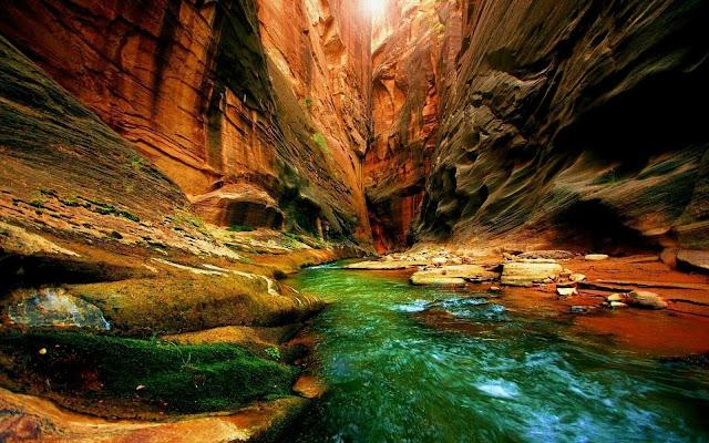 Wallpaper-HD-Nature