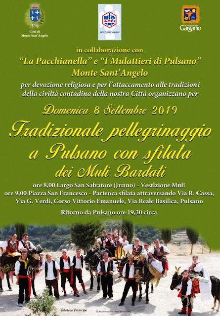 """""""I Muli Bardati"""" 2019 di Monte Sant'Angelo. [VIDEO] La sfilata"""