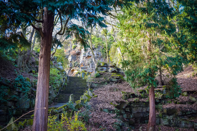Beaumont Park - stone steps up through the woods