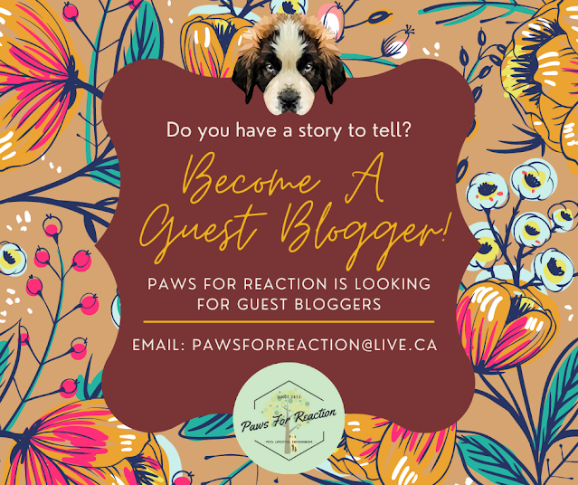 Become a Paws For Reaction guest blogger