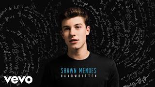 Lirik Lagu Imagination - Shawn Mendes