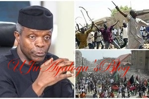 Sack IG of police, DSS boss and others now - Arewa youths advise Osinbajo