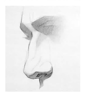 """ nose drawing by icuong"